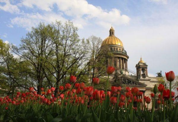 Завтра в Петербург вернётся весна