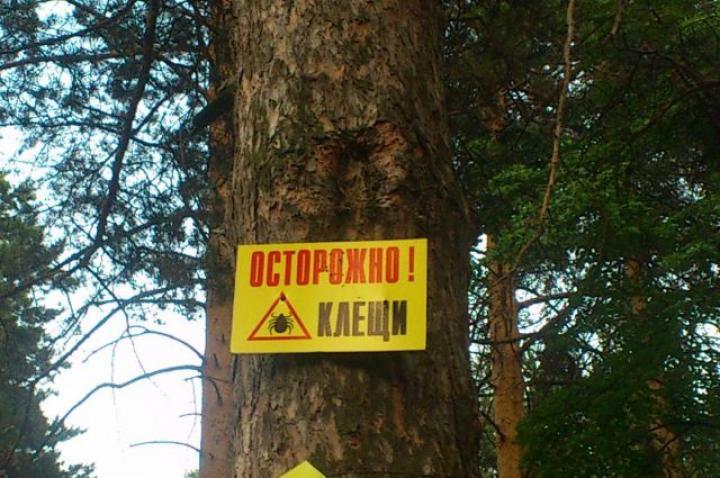 Жителям Хакасии напомнили, как жарить шашлык и защититься от клещей