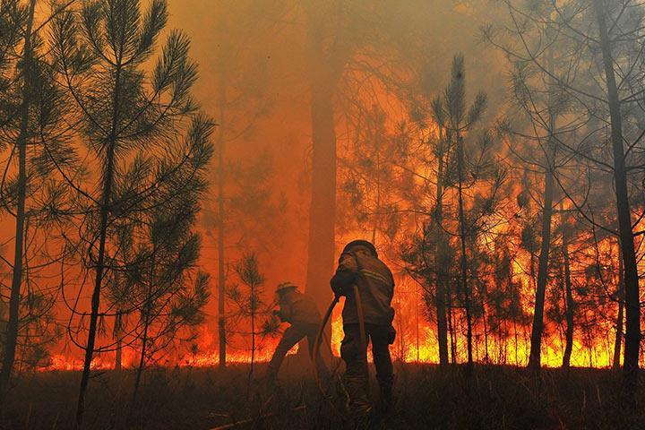 Красноярский губернатор не считает критичной ситуацию с пожарами в крае