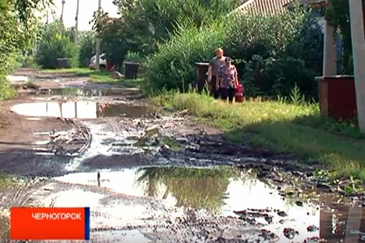 Жители Черногорска решили переименовать улицу Лесную в Болотную