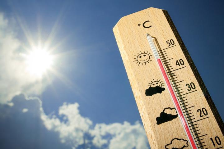 Предупреждение синоптиков: В Хакасии сильная жара