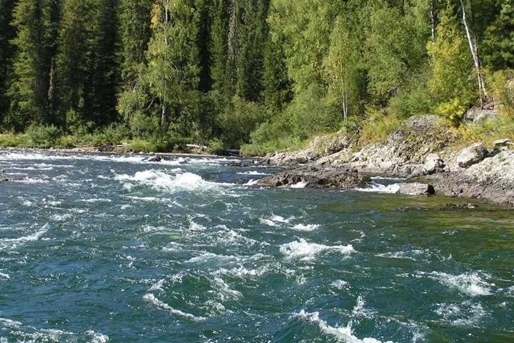 В Хакасии рыбакам объяснили, почему нельзя ловить рыбу в реке Абакан