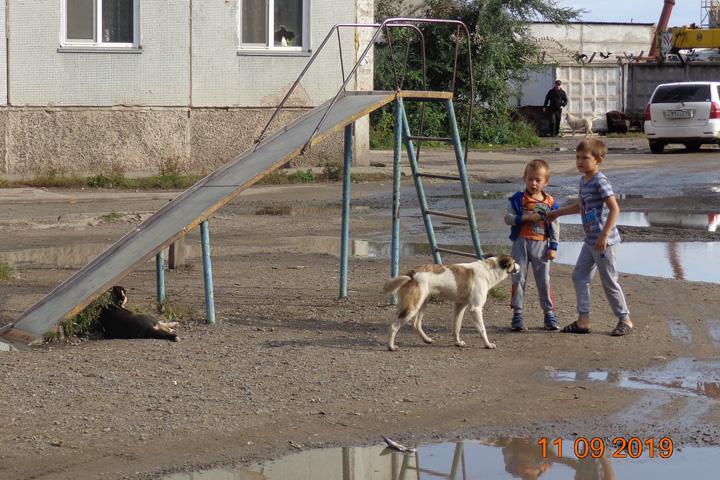 """Общаги: в Абакане """"ненужные дети бегают по грязным лужам"""""""