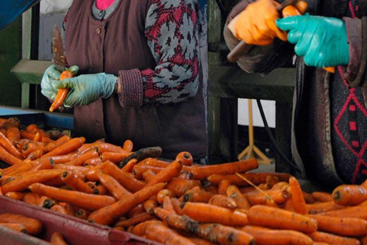 Руководители предприятий ФСИН зарабатывают миллиарды на еде для заключенных в обход антикоррупционных законов