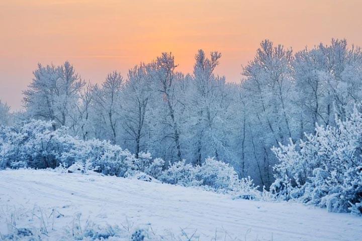 Прогноз погоды в Хакасии 25 ноября