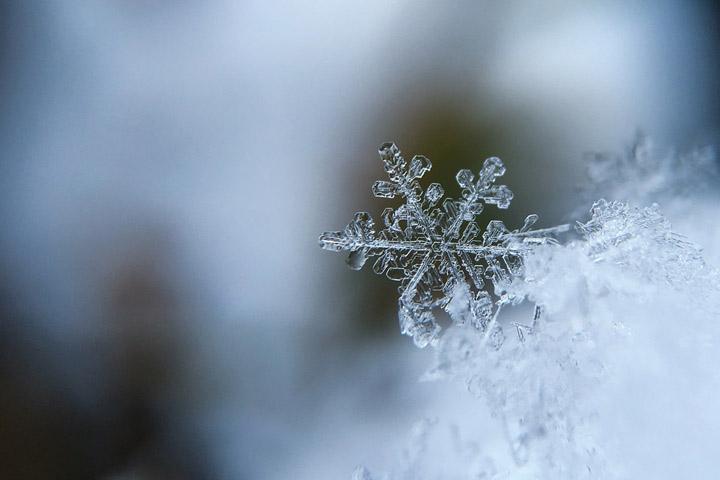 Прогноз погоды в Хакасии 1 декабря