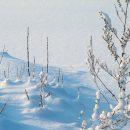 Прогноз погоды в Хакасии 15 декабря
